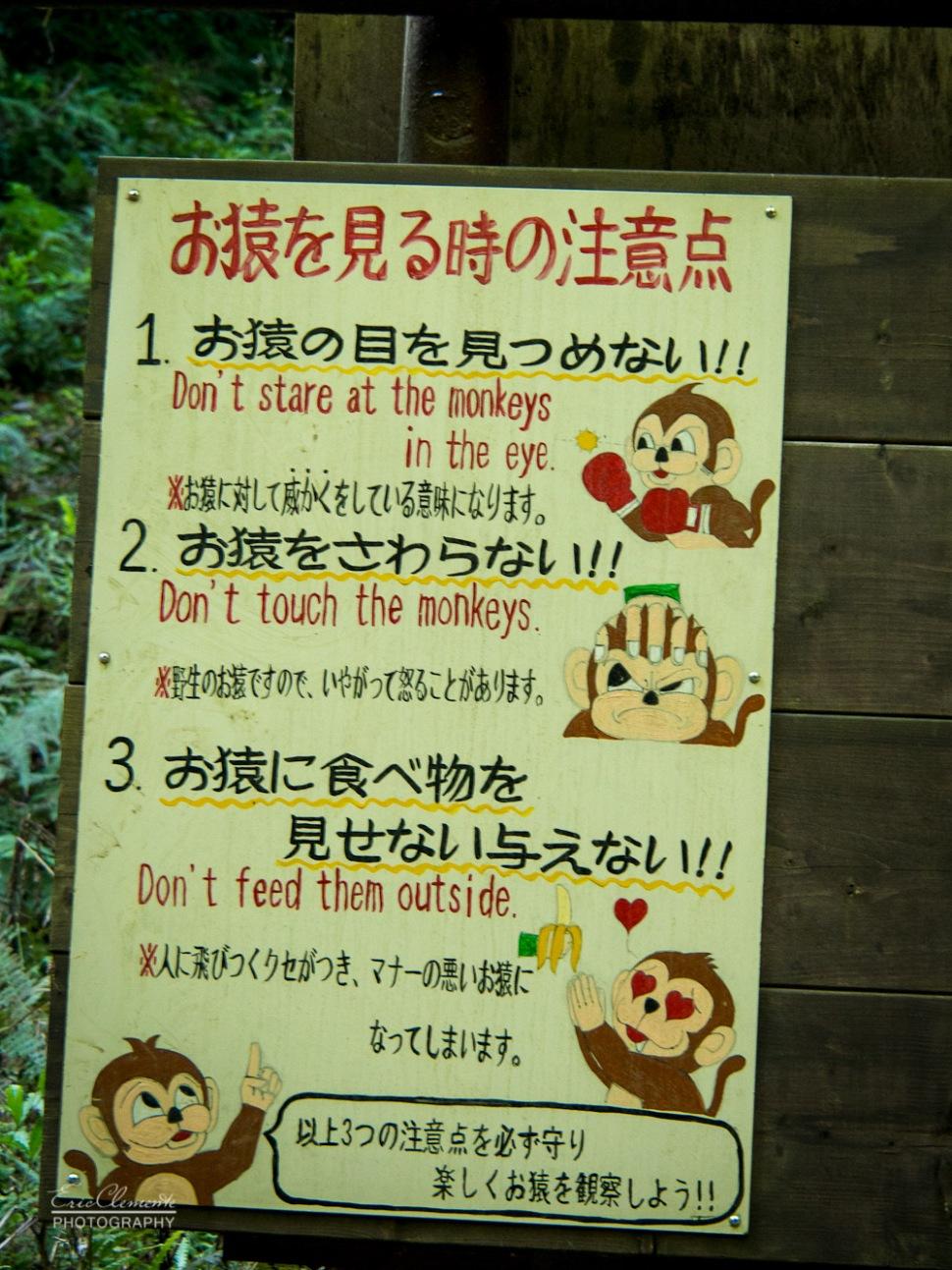 20141006-142-Monkey Park Iwatayama, Arashiyama Kyoto-Eric Clemente.jpg